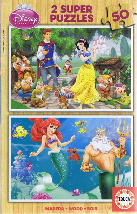 Disney Princess, 2x50 brikker (1)