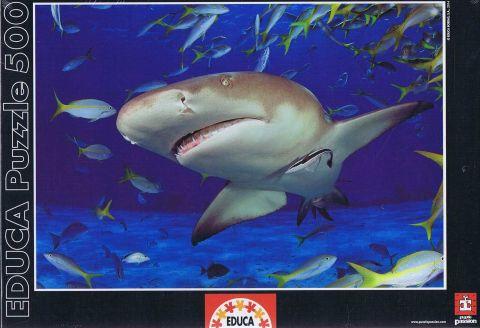 Shark, 500 brikker