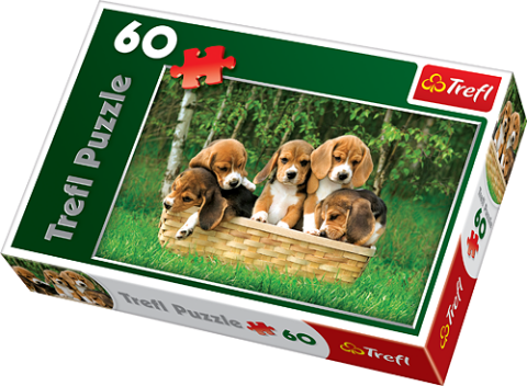 Beagle Puppies, 60 brikker (1)