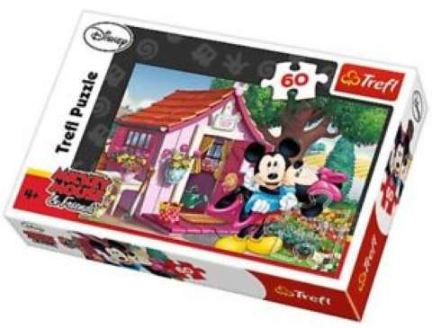 Mickey & Minnie in the Garden, 60 brikker (1)